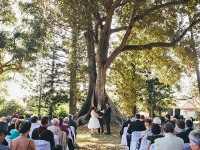 07-Fig-Tree-Grove-Ceremony-(image-courtesy-of-Fuscia-Photography)
